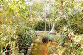 plantseum_000